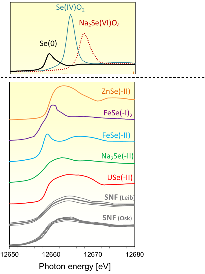 Figure 2: XANES obtained on the SF samples (in grey) compared with experimental spectra of reference compounds of selenium.