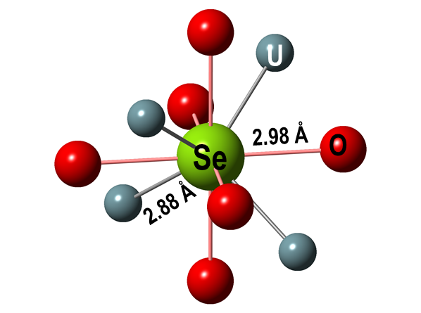 Figure 4: Optimized coordination environment of Se in UO<sub>2</sub>