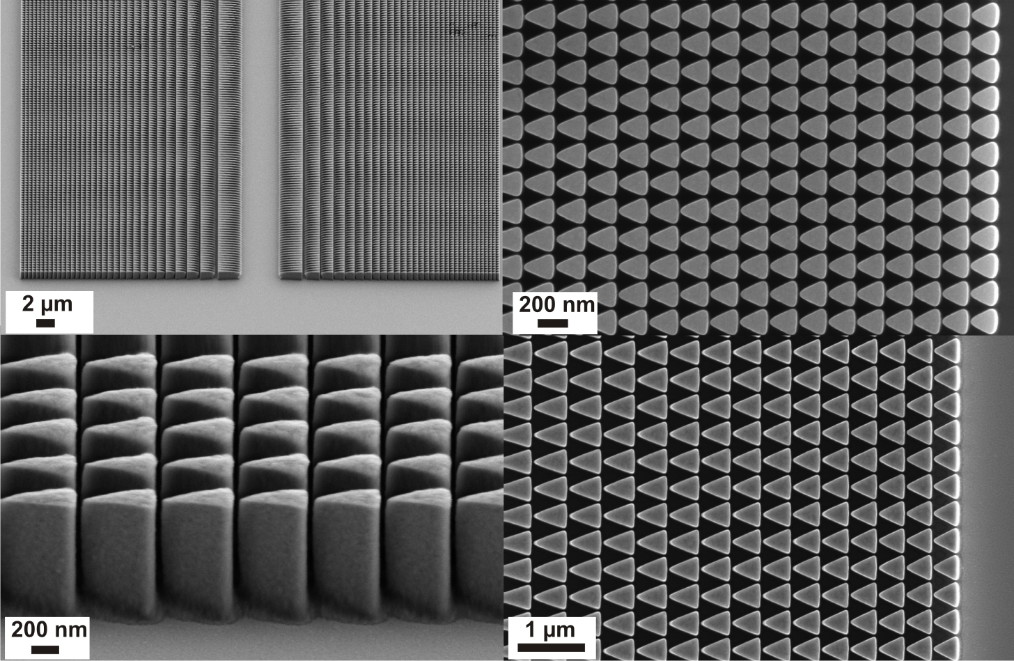 Scanning electron microscope images of nickel lens structures designed for blazed operation in tilted geometry.