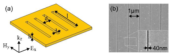 Fig. 1: (a) Schematic illustration of a 1D nanoslit array. (b) Scanning electron microscope image with the inset showing a zoomed-in image of one of the slits. [1]