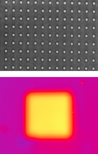 SEM image of a dye-coated ZnO nanopillar array on a glass slide (top). High enhancement of a fluorecence intensity is observed in the structured region (bottom).