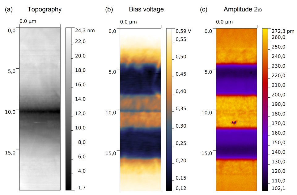 Fig. 1. Simultaneously acquired topographic image (a) while KPFM (b) and 2ω EFM (c) measurements were performed by the oscillation of the second eigenmode. To avoid rounding effects at the sample edges two samples were glued together with non-conductive epoxy.
