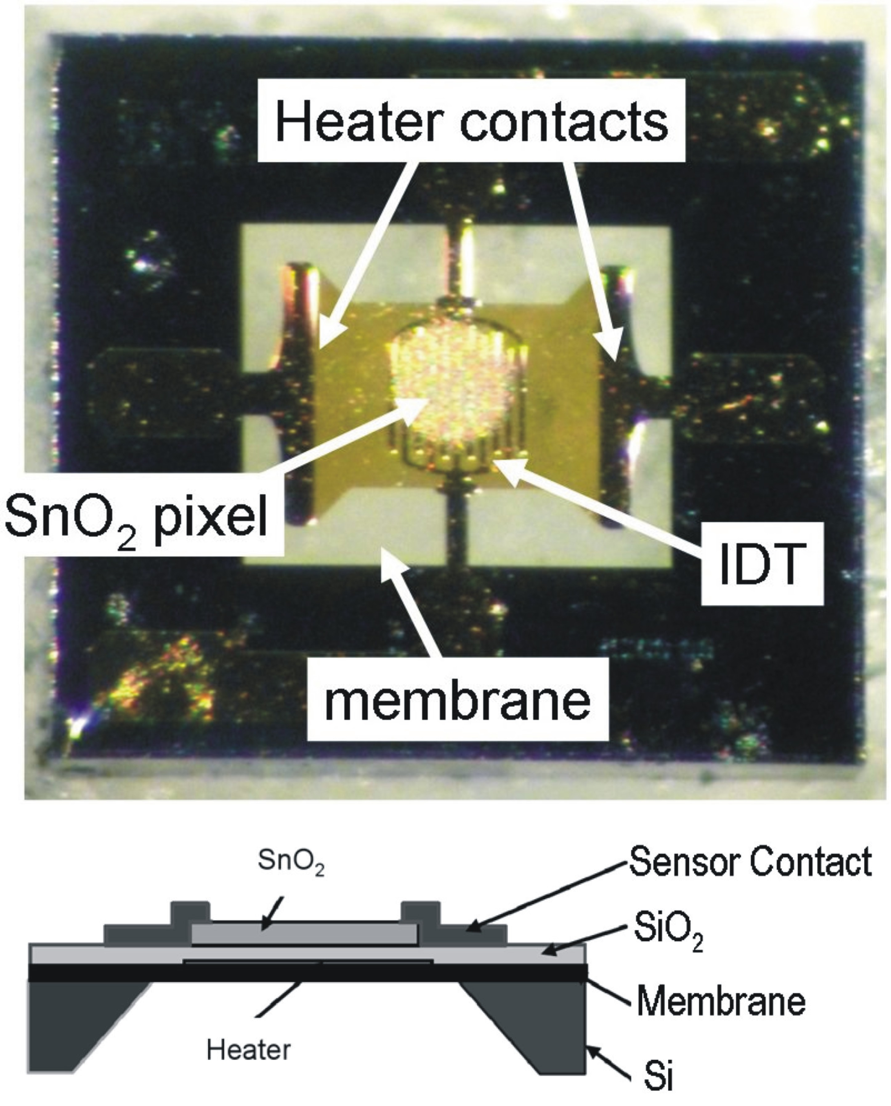LIFT printed SnO<sub>2</sub> sensor and schematics of a <a href='http://www.microsens.ch'>Microsens</a> gas sensor