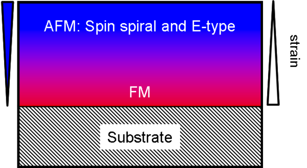 Diagram of the processes in the LuMnO<sub>3</sub> layers studied. The layer is highly strained close to the substrate, which leads to a ferromagnetic (FM) order there. As the distance grows, the strain decreases so that two antiferromagnetic (AFM) orders appear: the spin spirals and the E-type, where two spins point in one direction and the next two in the other.