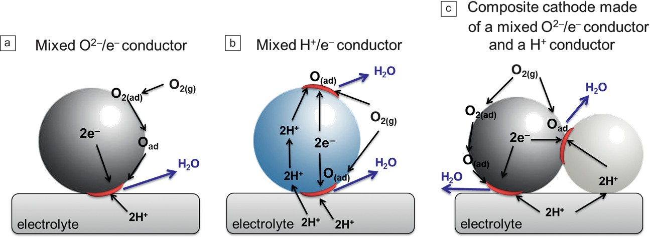 Possible reactions at the cathode using (a) a mixed O<sup>2-</sup> ion/e&minus; conductor, (b) a mixed H<sup>+</sup>/e<sup>&minus;</sup> conductor, and (c) a composite cathode made of a proton conductor phase and a mixed O<sup>2&ndash;</sup>/e<sup>&minus;</sup> conductor phase. The dark gray spheres represent a mixed O<sup>2&ndash;</sup>/e<sup>&minus;</sup> conductor phase, the light blue sphere is a mixed H<sup>+</sup>/e<sup>&ndash;</sup> conductor, while the light gray sphere is a H<sup>+</sup> conductor. The red semicircles represent the reaction sites where the oxygen reduction takes place.