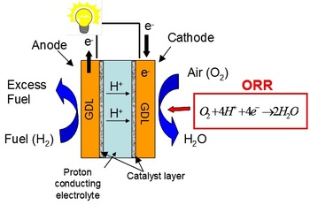 Working principle of a polymer electrolyte fuel cell