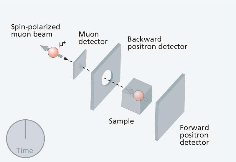 1. Polarised muons are fired into the sample.