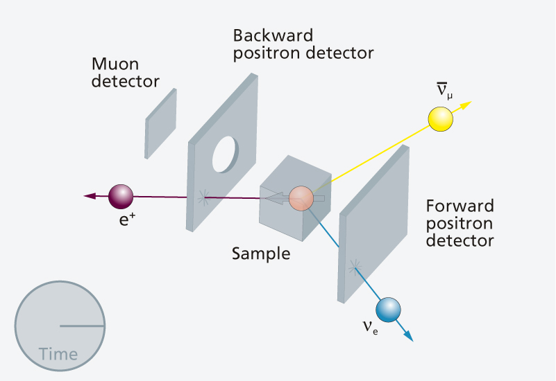 3. The Muon decays into three particles – the positron (e+) flies in the direction of the magnetic moment of the muon.