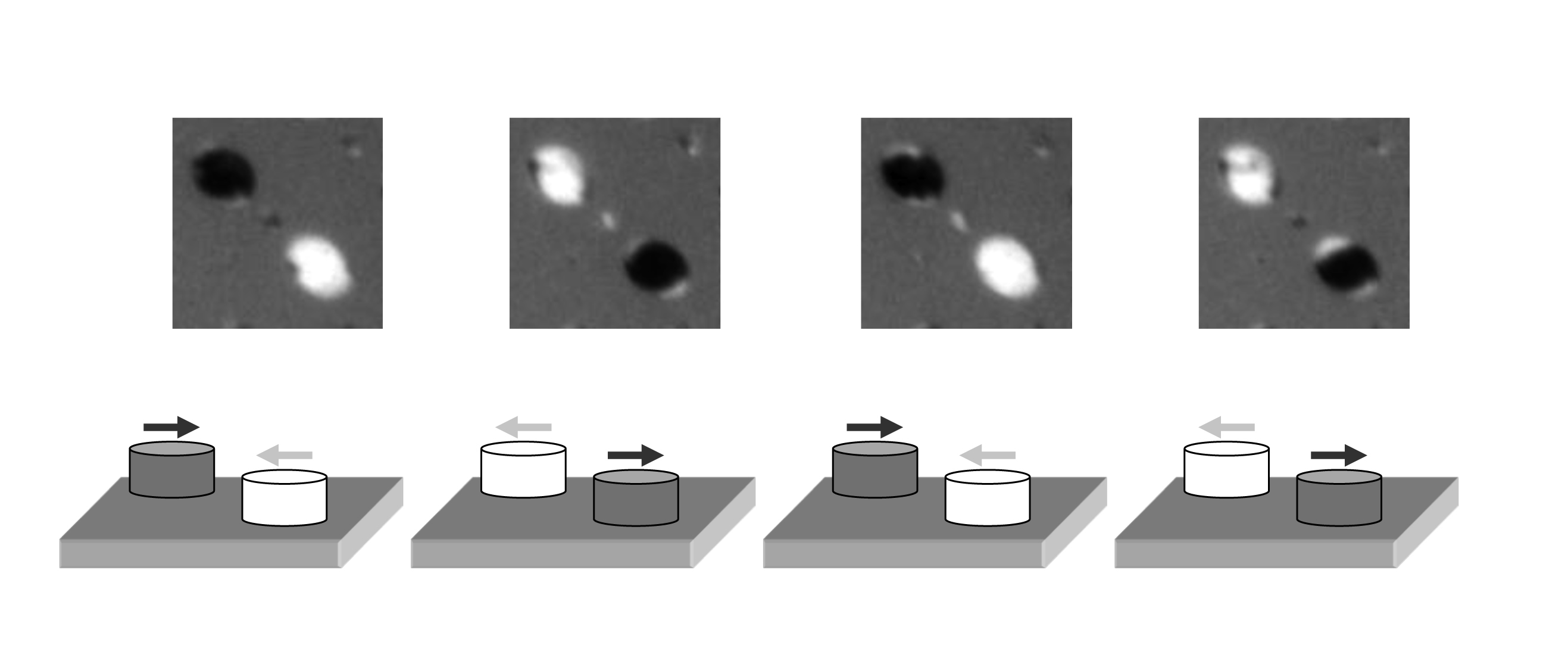 Images of the magnetic structures – from one image to the next, the magnetization of the two micrometer sized magnets was inverted using a laser flash. It is possible to repeat this process an arbitrary number of times. The colours – black or white – stand for the different directions of magnetization (the corresponding directions are shown in the lower row). The images were taken at the x-ray microscope at the Swiss Light Source of the Paul Scherrer Institute.