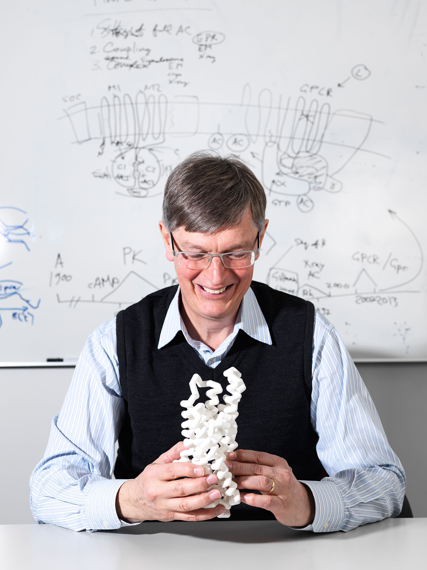Gebhard Schertler is Head of the Division for Biology and Chemistry at PSI. He and his research team applied themselves to the new study with their many years of experience in research with G protein coupled receptors.  Here he holds an oversized model of such a receptor in hands. (Photo: Scanderbeg Sauer Photography)