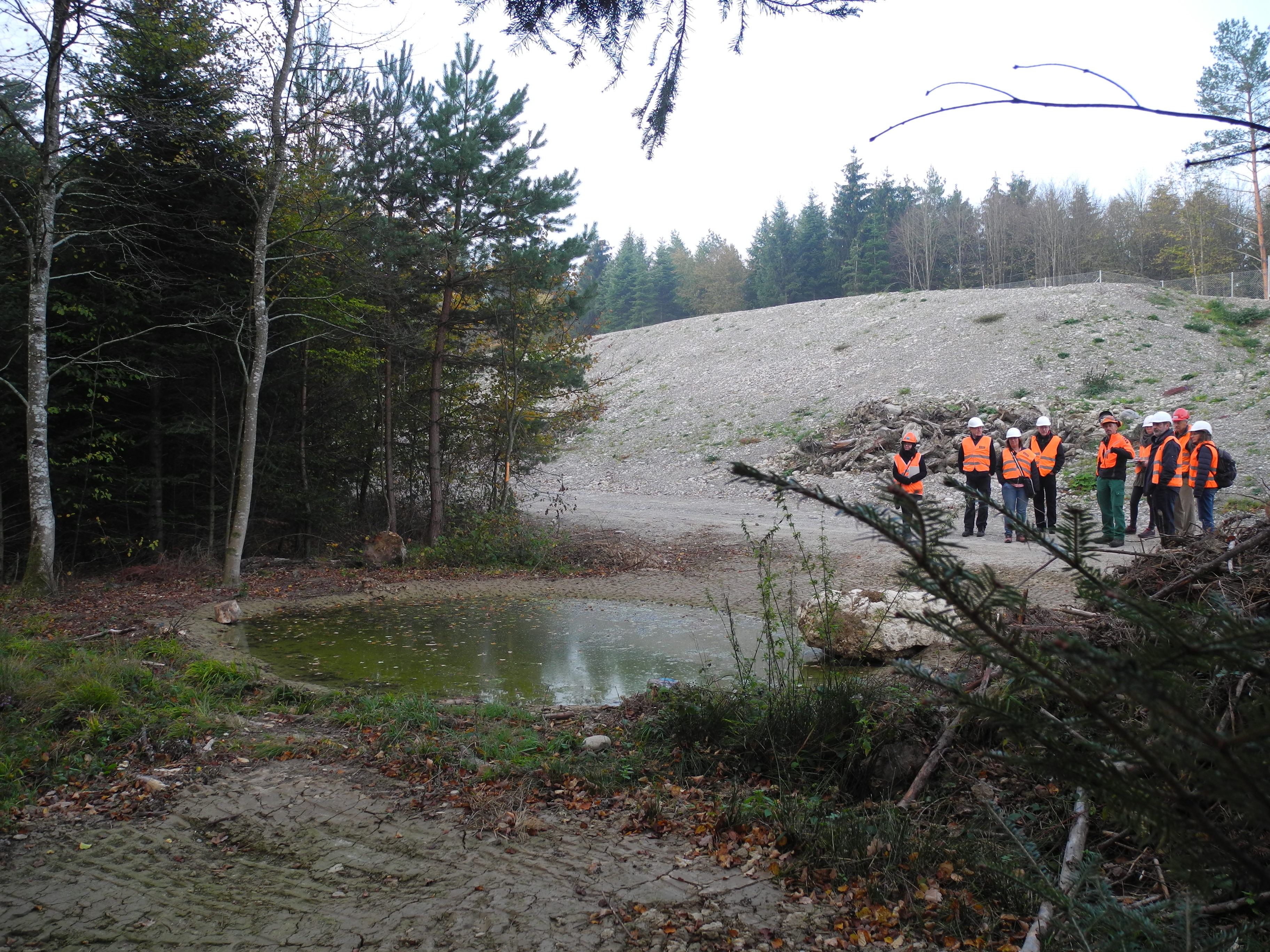 The <q>Forest</q> work group inspects one of the spawning pools provided specifically for endangered amphibians. (Photo: Paul Scherrer Institute/Christian Heid)