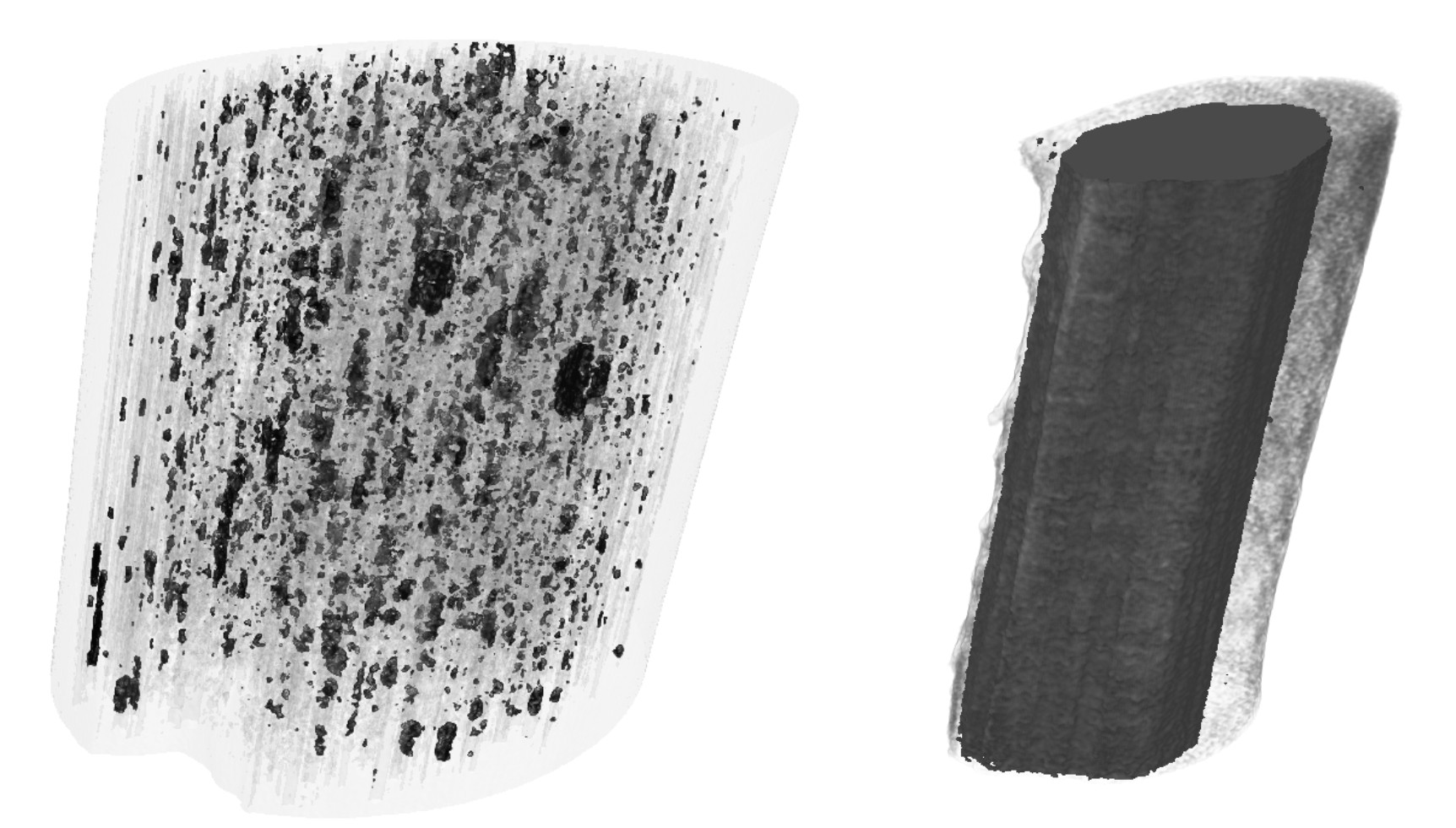 (top) 3D rendering of density distribution within carbon fibers, where high- and low-density regions are shown in black and in a semitransparent gray tone, respectively. On the left we show a fiber of 25 µm diameter, and on the right a 10 µm-diameter fiber made from a different precursor. Remarkable differences are observed between the two fibers.