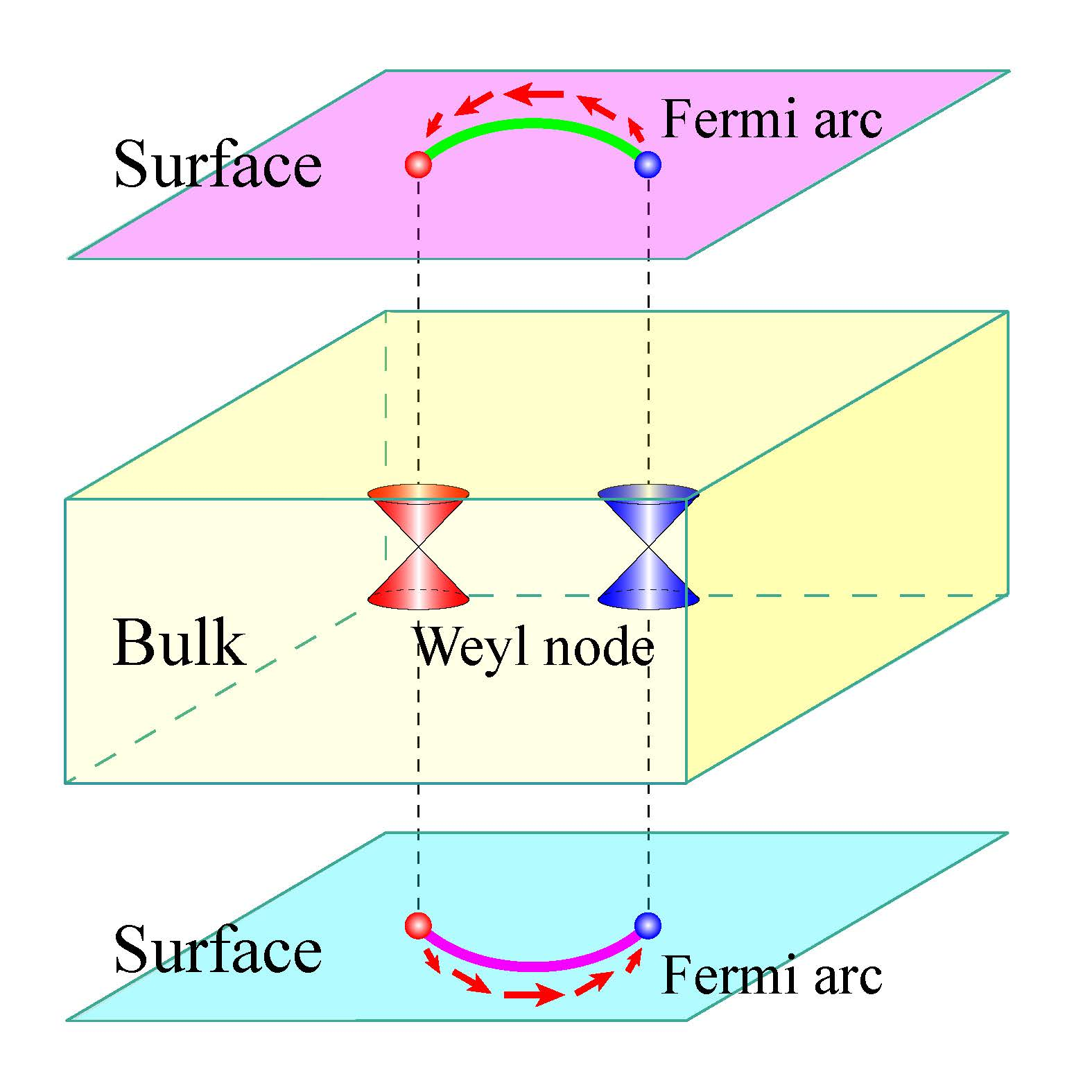 Schematic of a Weyl semimetal with spin polarized Fermi arcs on its surfaces connecting the projections of two Weyl nodes with opposite chirality.