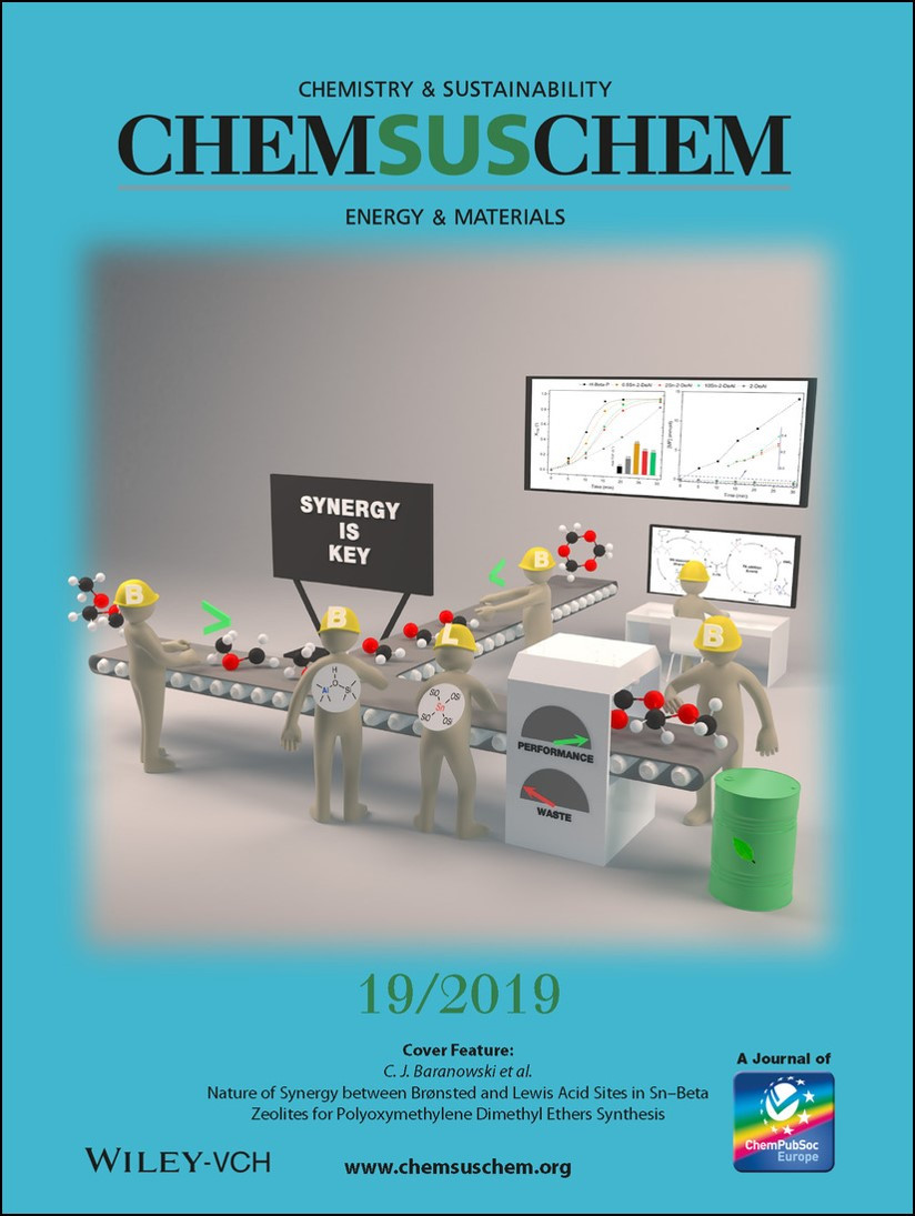 Cover Feature ChemSusChem 2019
