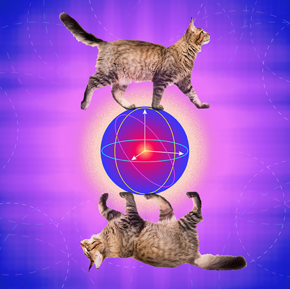 Cat Qubit 2