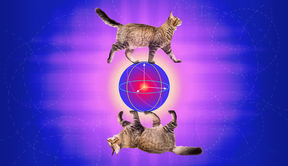 Cat Qubit