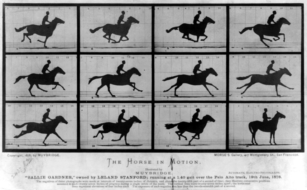 The first high-speed photographs: in 1878 Eadweard Muybridge took a series of photographs of a galloping horse and proved that it actually raised all four hooves off the ground for a brief moment. The basic idea for this series of photos is similar to the approach used in the new study method for SwissFEL. (Source: Library of Congress Prints and Photographs Division Washington, D.C. 20540 USA)
