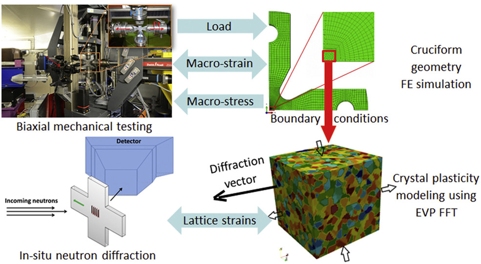 Synergy between in-situ mechanical testing and multi-scale FE-FFT modeling