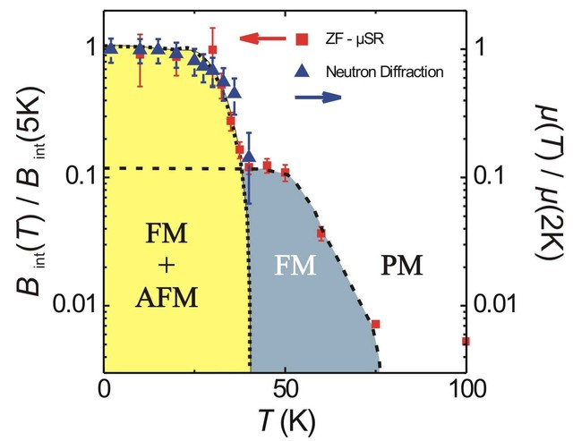 Temperature dependence of the normalized internal magnetic field Bint(T)/Bint(5K) as derived from ZF-μSR muon spin relaxation measurements with low energy muons implanted with 4.1 keV into a 56-nm-thin (110) LuMnO3 thin film. For comparison, the normalized magnetic moment μ(T)/μ(2K) vs T is shown (blue triangle), with µ being proportional to the square root of the integrated neutron intensity. The black dashed lines for the FM and AFM phase are a guide to the eye but also indicate how the temperature depen…