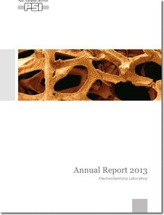 Annual Report 2013 ecl.jpg