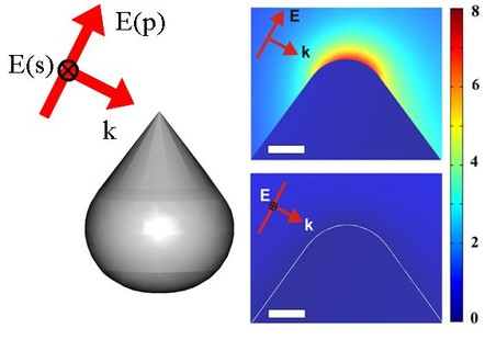 Fig.3 Enhancement of optical electic field at the metallic nano-tip: simulation