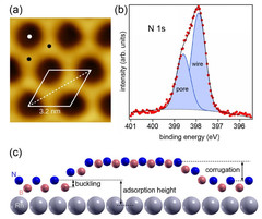 Atomic structure of 2D materials