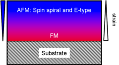 Diagram of the processes in the LuMnO3 layers studied. The layer is highly strained close to the substrate, which leads to a ferromagnetic (FM) order there. As the distance grows, the strain decreases so that two antiferromagnetic (AFM) orders appear: the spin spirals and the E-type, where two spins point in one direction and the next two in the other.