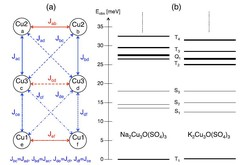 (a) Schematic picture of the Cu2+ hexamers in the compounds A2Cu3O(SO4)3 (A = Na, K). The parameters Jij denote the exchange coupling scheme adopted to describe the observed spin excitations. (b) Energies of the spin excitations observed for A2Cu3O(SO4)3 (A = Na, K) denoted by Si , Ti, and Qi for the singlet, triplet, and quintet states, respectively. from Fig. 1