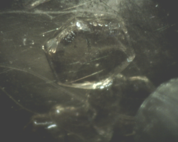 Ice crystal grown in equilibrium