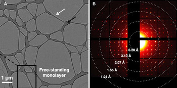 Cryo-TEM investigation of a free-standing monolayer of a calixarene derivative. The TEM-Picture on the left shows the monolayer deposited on a lacey carbon support. The electron diffraction pattern on the left confirms the formation of a crystalline monolayer