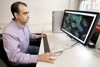 PSI scientist Andrea Prota examines a protein structure on the computer screen. (PSI/M. Fischer)