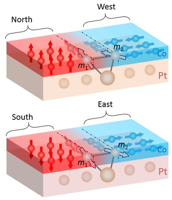 If a group of cobalt atoms aligns to the North or South (red), the neighbouring cobalt atoms align to the West or East (blue). The orientation of the neighbouring atoms is within the plane. This interaction requires sandwiching of the cobalt layer between a platinum layer (below, beige) and an aluminium oxide layer (above, not shown here). (Illustration: Paul Scherrer Institute/Zhaochu Luo)
