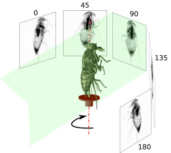 Figure 11: Tomography data acquisition
