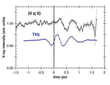 Time dependence of the magnetic diffraction intensity of the (0 q 0) reflection of TbMnO3 (upper part) showing a delayed response to the short THz excitation characterized by electro optical sampling.